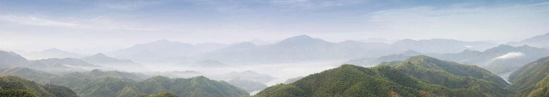 人才招聘_深圳市三绿园林实业有限公司